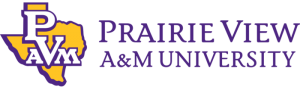 White background with purple and yellow words and state of Texas